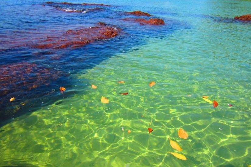 ทะเลในฝันของฉัน